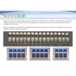 NexxZr カラー